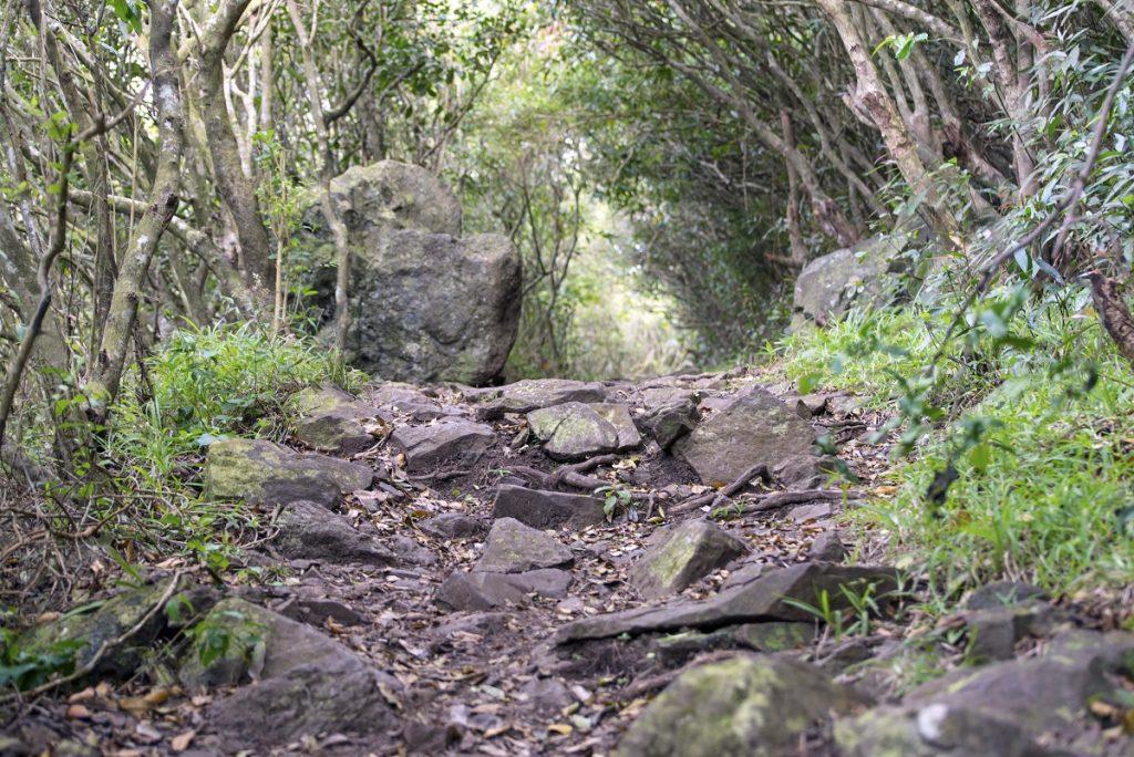 Le Pouce - Moka Trail